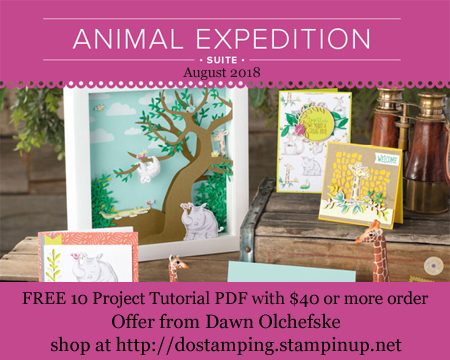 With a $40 order, enjoy a FREE Animal Expedition 10- project tutorial PDF from Dawn Olchefske (August 2018)