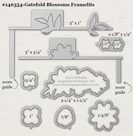 Gatefold Blossoms-146354G-DOstamping Stampin' Up! Framelits Measurements sizes for 2018-2019 Annual Catalog #stampinup #dostamping #framelitsizes
