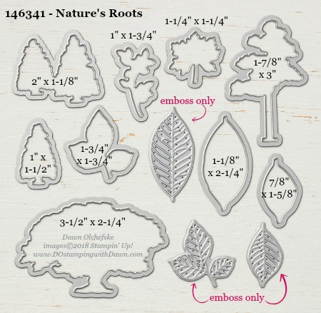 Nature's Roots - 146341-DOstamping Stampin' Up! Framelits Measurements sizes for 2018-2019 Annual Catalog #stampinup #dostamping #framelitsizes