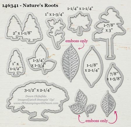 Nature's Roots - 146341-DOstamping Stampin' Up! Framelits Measurements sizes for 2018-2019 Annual Catalog #stampinup #dostamping #framelitsizes