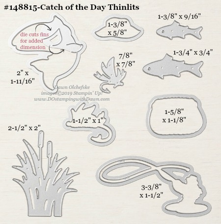 Stampin' Up! Catch of the Day Thinlit #DOstamping #stampinup #CatchOfTheDay #bigshot #cardmaking #HowdSheDOthat #papercrafting #masculinecards