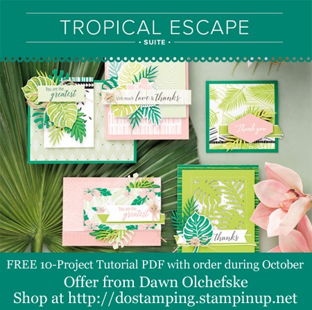 DOstamping Order BONUS - FREE Tropical Escape Suite 10-Project Tutorial PDF, shop with Dawn Olchefske, http://bit.ly/shopwithdawn