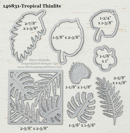 Stampin' Up! Tropical Thinlits #dostamping #stampinup #Tropical #bigshot #diy #handmade #cardmaking