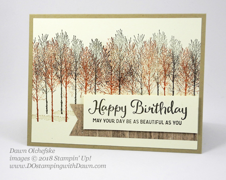Stampin' Up! Winter Woods is not just for winter.  Card by Dawn Olchefske #dostamping  #stampinup #handmade #cardmaking #stamping #papercrafting #winterwoods #stamparatus