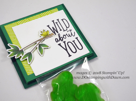 Frog candy packaing with Stampin' Up!s Animal Expedition Suite product shared by Dawn Olchefske for DOstamperSTARS Thursday Challenge #DSC293 #dostamping #stampinup #handmade #cardmaking #stamping #papercrafting #packaging