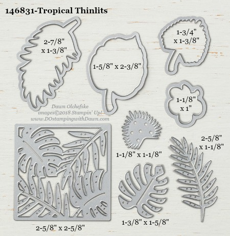 Tropical-146831-DOstamping Stampin' Up! Framelits Measurements sizes for 2018-2019 Annual Catalog #stampinup #dostamping #framelitsizes