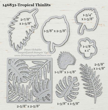 Tropical-146831-DOstamping Stampin' Up! Framelits Measurements sizes for 2018-2019 Annual Catalog #stampinup #dostamping #framelitsizes