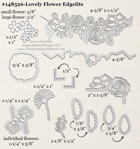 148526 Lovely Flowers Edgelits from Stampin' Up!, measurements by Dawn Olchefske #dostamping #framelits #dostamping #bigshot #papercrafting