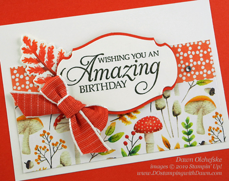 Stampin' Up! Sale-a-Bration Painted Seasons card by Dawn Olchefske #dostamping #howdshedothat #stampinup #handmade #cardmaking #stamping #papercrafting #birthdaycards #saleabration #paintedseasons
