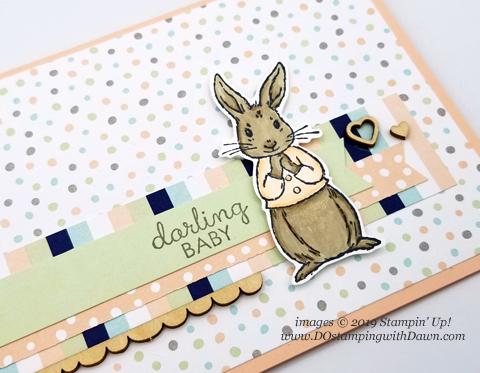 Bunny-CU