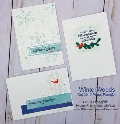 Paper Pumpkin October Winter Wonder Blop Hop | Dawn Olchefske dostamping #stampinup #handmade #cardmaking #stamping #diy #papercrafting #paperpumpkin #christmascards