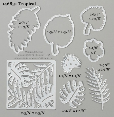 Stampin' Up! Tropical Dies sizes shared by Dawn Olchefske #dostamping #stampinup #papercrafting #diecutting #stampindies