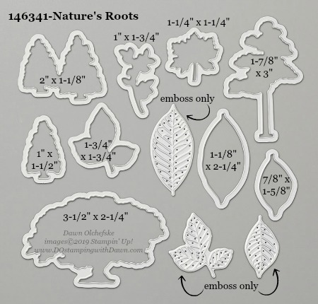 Stampin' Up! Nature's Roots Dies sizes shared by Dawn Olchefske #dostamping #stampinup #papercrafting #diecutting #stampindies