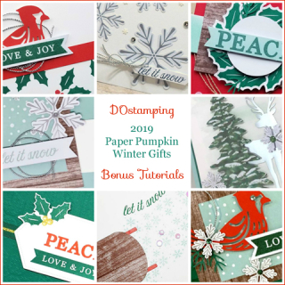Winter Gifts, November 2019 Paper Pumpkin with DOstamping to receive a free alternate ideas tutorial PDF bonus each month.  Subscribe with Dawn Olchefske here:  http://bit.ly/DOstampingPaperPumpkin  #paperpumpkin #dostamping #stampinup #alternativeideas
