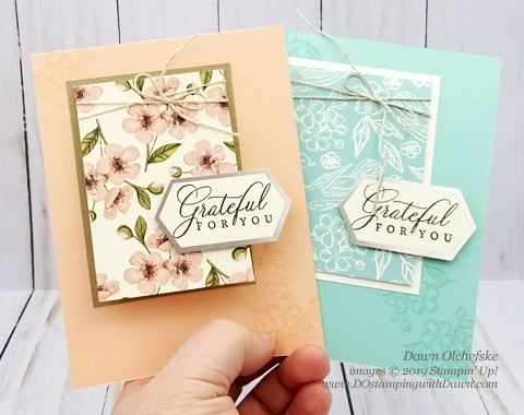 Paper Pumpkin Hugs From Shelli Blop Hop | Dawn Olchefske dostamping #stampinup #handmade #cardmaking #stamping #diy #papercrafting #paperpumpkin #cardkits