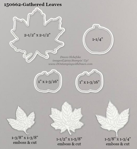 Stampin' Up! Holiday Catalog Gathered Leaves Die sizes shared by Dawn Olchefske #dostamping  #stampinup #handmade #cardmaking #stamping #diy #rubberstamping #papercrafting #dies