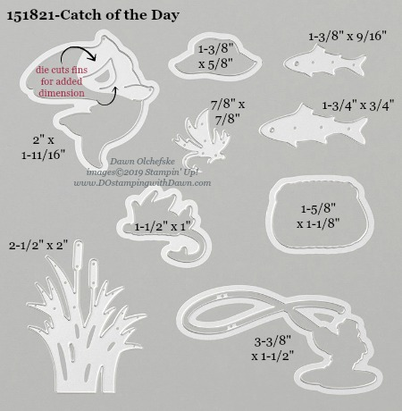 Stampin' Up! Catch of the Day Dies sizes shared by Dawn Olchefske #dostamping #stampinup #papercrafting #diecutting #stampindies