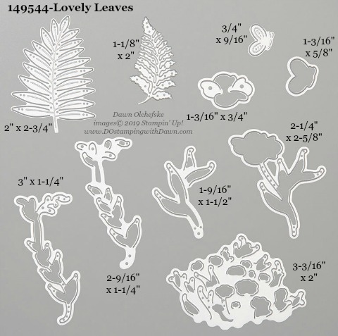 Stampin' Up! Lovely Leaves Dies sizes shared by Dawn Olchefske #dostamping #stampinup #papercrafting #diecutting #stampindies