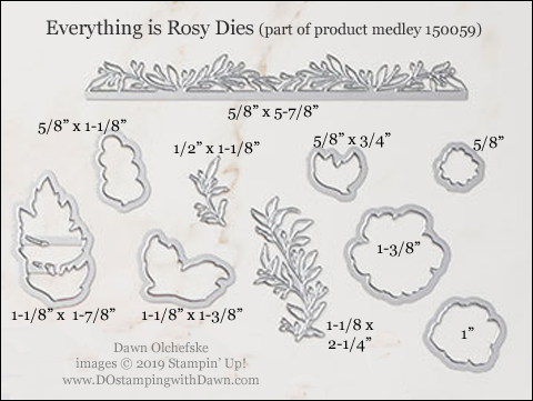 Stampin' Up! 150059 Everything is Rosy (Product Medley) Dies sizes shared by Dawn Olchefske #dostamping #stampinup