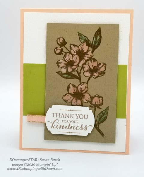 Stampin' Up! Forever Blossom swap shared by Dawn Olchefske #dostamping #howdshedothat #stampinup #handmade #cardmaking #stamping #papercrafting (Susan Burch)