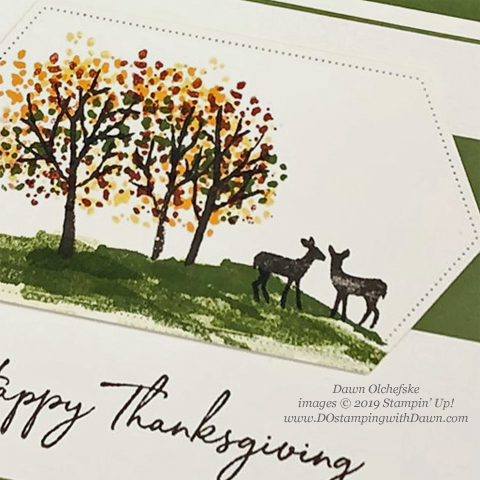 Stampin' Up! Snow Front and Day of Thanks card shared by Dawn Olchefske #dostamping #howdshedothat #stampinup #handmade #cardmaking #stamping #papercrafting #thanksgivingcards