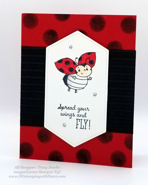 Stampin' Up! Little Ladybug swap cards shared by Dawn Olchefske #dostamping #howdshedothat #stampinup #handmade #cardmaking #stamping #papercrafting (Tracy Jacobs)