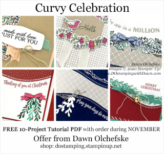 DOstamping NOVEMBER 2020 order BONUS - FREE Curvy Celebration 10-Project Tutorial PDF, https://bit.ly/shopwithdawn | #dostamping #cardmaking #CurvyCelebration #stampinup