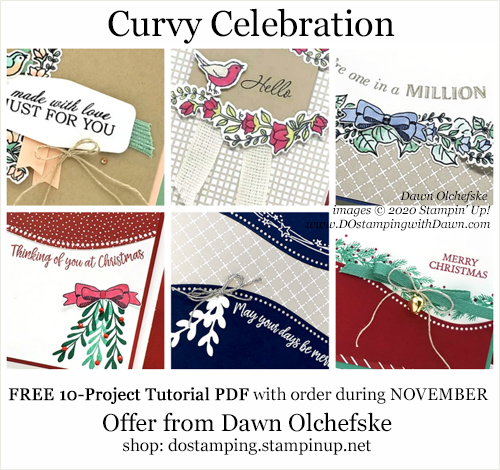 Curvy Celebration Shopping Gift from Dawn Olchefske #dostamping #stampinup #curvycelebration-a