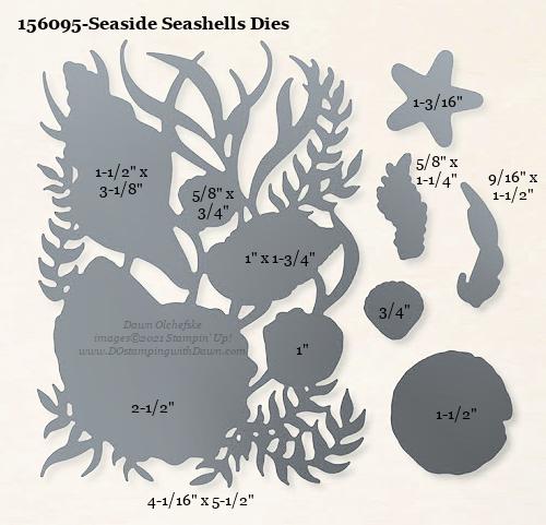 156095-Stampin' Up! Seaside Seashells Dies measurements #DOstamping #stampinup #stampincut #cardmaking #HowdSheDOthat #papercrafting