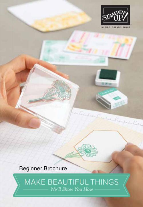 Stampin' Up! Beginner Brochure 2020-2021 #dostamping #dawnolchefske #howdsheDOthat #stampinup #cardmaking #papercrafting
