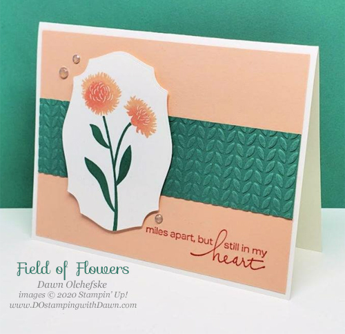 Stampin' Up! Field of Flowers card shared by Dawn Olchefske #dostamping #howdshedothat #stampinup #handmade #cardmaking #stamping #papercrafting