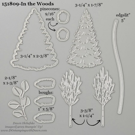 Stampin' Up! In the Woods Dies sizes shared by Dawn Olchefske #dostamping #stampinup #papercrafting #diecutting #stampindies