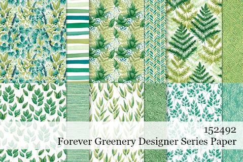 Stampin' Up! Forever Greenery Designer Series Paper shared by Dawn Olchefske #dostamping #stampinup #handmade #cardmaking #stamping #papercrafting