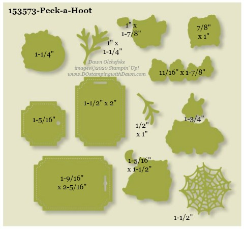 153573-Stampin' Up! Peek-a-Hoot Die measurements #DOstamping #stampinup #stampincut #cardmaking #HowdSheDOthat #papercrafting