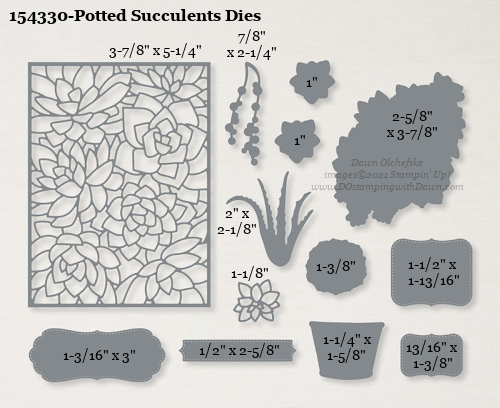 154330-Stampin' Up! Potted Succulents Dies measurements #DOstamping #stampinup #stampincut #cardmaking #HowdSheDOthat #papercrafting