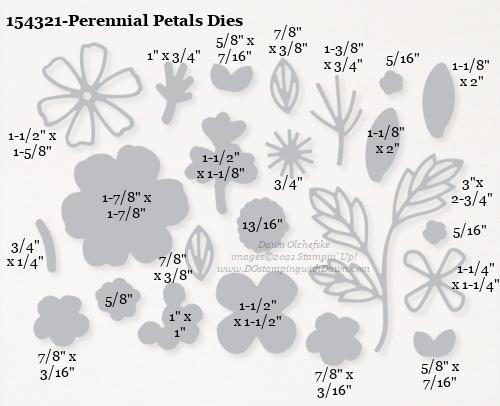 154321-Stampin' Up! Perennial Petals Dies measurements #DOstamping #stampinup #stampincut #cardmaking #HowdSheDOthat #papercrafting