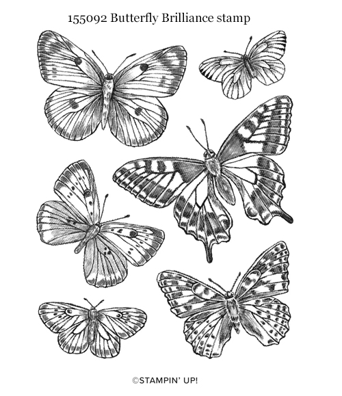 155092 Butterfly Brilliance stamp from Stampin' Up! shared by Dawn Olchefske #dostamping #howdSheDOthat
