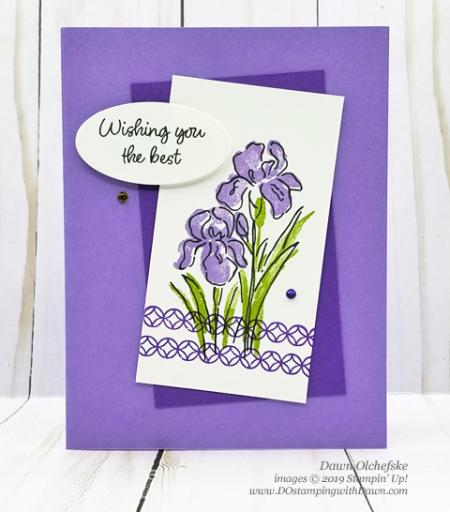 Ispiring Iris2