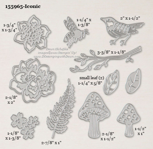 Stampin' Up! Iconic Die size shared by Dawn Olchefske #dostamping #stampinup #papercrafting #diecutting #stampindies