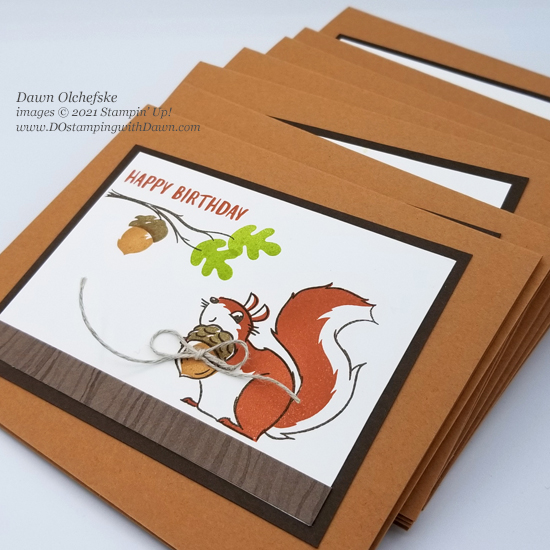 Stampin' Up! Nuts for Squirrels stamp set card by Dawn Olchefske coming August 3 #dostamping #HowdSheDOthat cu