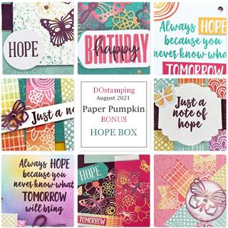 August 2021 Hope Box Paper Pumpkin Alternative Bonus Tutorialsl from Dawn Olchefske #dostamping #howdSheDOthat #paperpumpkin 320