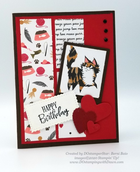 Stampin' Up! birthday cards shared by Dawn Olchefske #dostamping #howdshedothat #stampinup #handmade #cardmaking #stamping #papercrafting (Berni Baio)