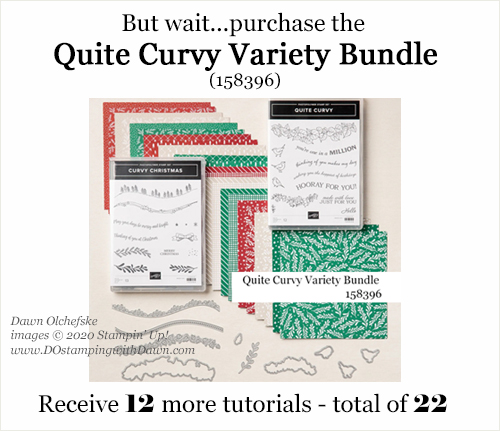 Curvy Celebration Shopping Gift from Dawn Olchefske #dostamping #stampinup #curvycelebration-b