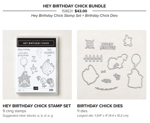 Hey Birthday Chick Bundle from Stampin' Up! share by Dawn Olchefske #dostamping #birthday