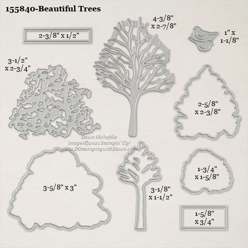 Stampin' Up! Beautiful Trees Dies sizes shared by Dawn Olchefske #dostamping #stampinup #papercrafting #diecutting #stampindies