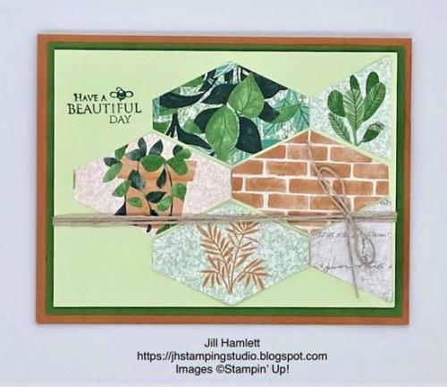 Stampin' Up! Bloom Where You're Planted Suite card shared by Dawn Olchefske #dostamping (DOstamperSTAR Jill Hamlett)