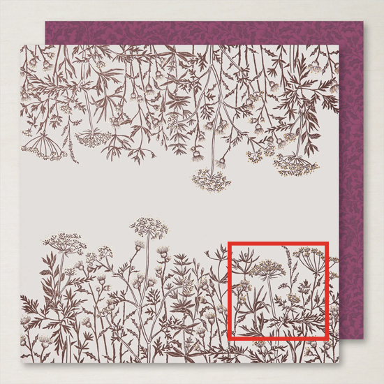 Stampin' Up! Blackberry Beauty Specialty Designer Series Paper shared by Dawn Olchefske #dostamping #HowdSheDOthat-2
