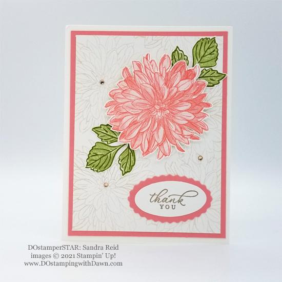 Sale-A-Bration Delicate Dahlias free stamp set card shared by Dawn Olchefske #dostamping #stampinup #DOstamperSTARS (Sandra Reid)