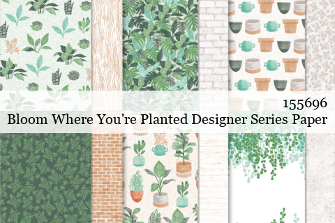 155696 Stampin' Up! Bloom Where You're Planted Designer Series Paper shared by Dawn Olchefske #dostamping #stampinup #handmade #cardmaking #stamping #papercrafting
