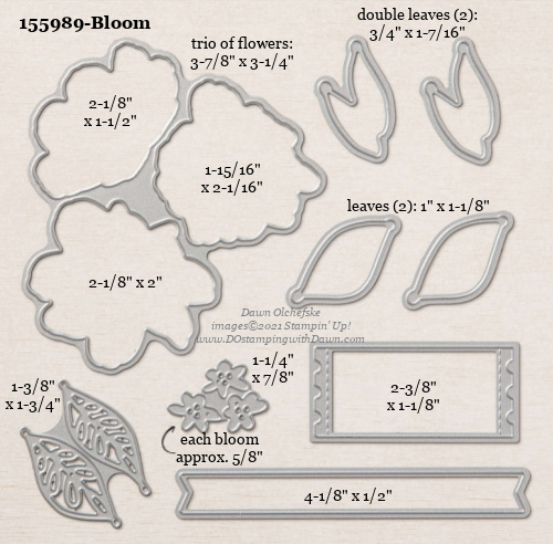 Stampin' Up! Bloom Dies sizes shared by Dawn Olchefske #dostamping #stampinup #papercrafting #diecutting #stampindies